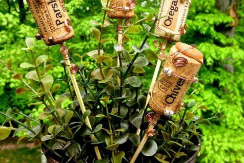 De la bière et du vin pour les plantes